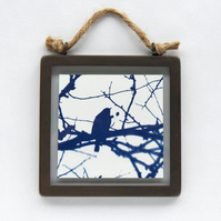 Robin in branches Cyanotype in industrial style metal and glass square frame