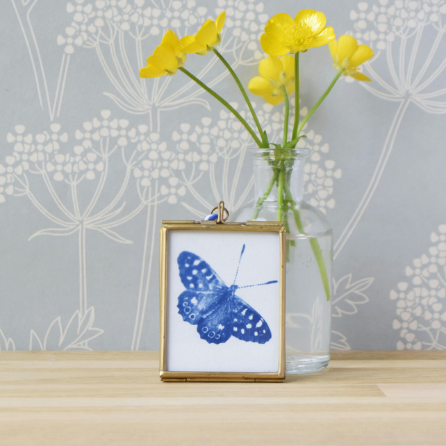 Cyanotype Butterfly in gold edged hanging frame