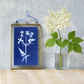 Cow Parsley Cyanotype No.4 in gold edged frame