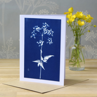 Cow Parsley Cyanotype card No. 3