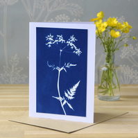 Cow Parsley Cyanotype Card No. 5