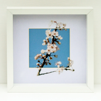 "Stitched photograph ""Spring Blossom"""