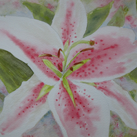 Watercolour Flower Lily  ORIGINAL