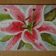 Watercolour Lily ACEO. ORIGINAL.
