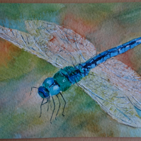 Watercolour Dragonfly OSWOA ORIGINAL