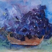 Grapes Watercolour OSWOA