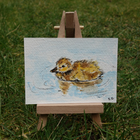 Duckling ORIGINAL miniature Painting ACEO