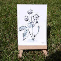 Miniature Strawberry Flowers sketch ACEO Original