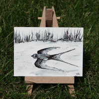 Miniature Swallow Bird sketch ACEO Original