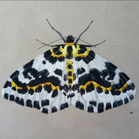 Hand Embroidered Silk Magpie Moth