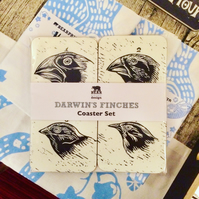 Darwin's Finches Coaster Set