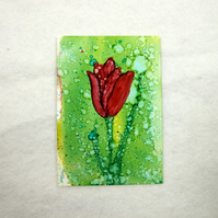 ACEO Miniature Painting, Red Tulip