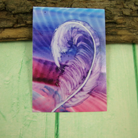 ACEO Miniature Painting, Feather