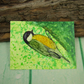 ACEO Miniature Painting, Yellow Tit, British Garden Bird