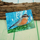 ACEO Miniature Painting, Nuthatch, British Garden Bird