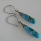 Mohave Turquoise Gemstone Earrings
