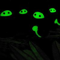 Set of 3 Glow in the Dark Ninja Companions