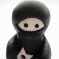 Glow in the Dark Ninja Companion