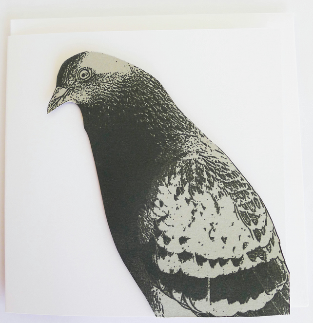 pigeon greetings card