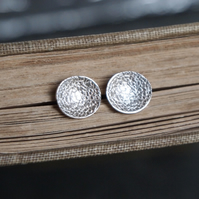 Earrings, Oval Studs, Argentium Silver