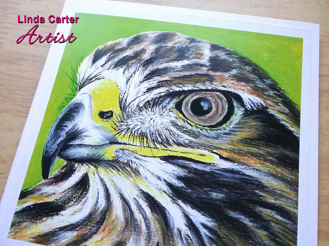 Hawk Greetings card