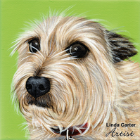 "Custom single pet portrait 6"" square, painted in acrylics. Dog, cat painting"
