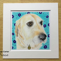 Colour pencil pet portrait, dog, cat custom drawing
