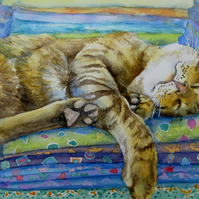 Cat Nap: beautiful painting for cat lovers