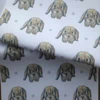 Rabbit, wrapping paper, gift wrap, for rabbit lovers,for rabbit owners