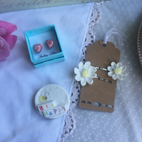 Gift set. Earrings, hair slides and magnet.