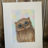 Olly the owl. Original mounted painting