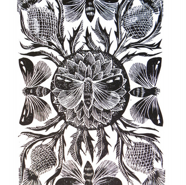 Moths and Thistles Original Lino Cut Print Black