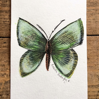 Butterfly hand painted watercolour and lino print Butterfly 6