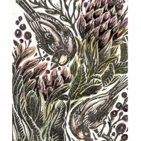 Proteas and Finches Hand Coloured Lino Cut Print.