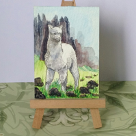 Aceo Alpaca watercolour painting