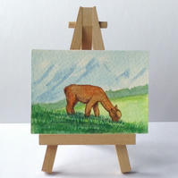 Aceo of alpaca grazing original art card