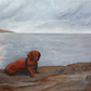 "Original acrylic painting  ""Dachshund on the Rocks"""