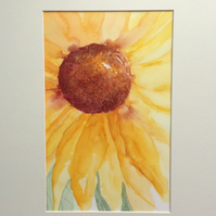 'Sunflower' watercolour painting