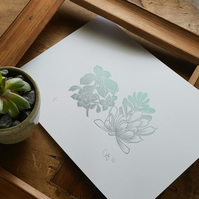 Limited edition Succulents lino print
