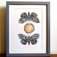 Moth Whisper linoprint