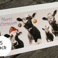 Xmas Card(5 card pack) - Merry Moos
