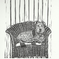Lloyd Loom Terrier I