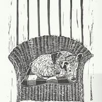 Lloyd Loom Terrier II