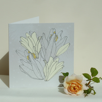 Ivory lilies (set of 5 cards)