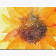 Sunflower (set of 5 cards)