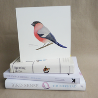 Bullfinch square card