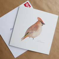 Waxwing square card