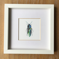 Jewel Beetle print