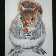 Aceo Animal Red Squirrel Wildlife Original Oil Painting