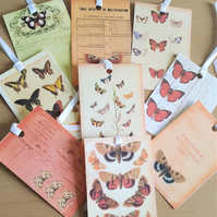 Gift Journal Tags Vintage Botanical Butterfly  x 8